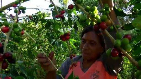 نیکاراگوئه Nicaragua